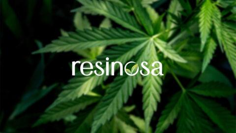Resinosa